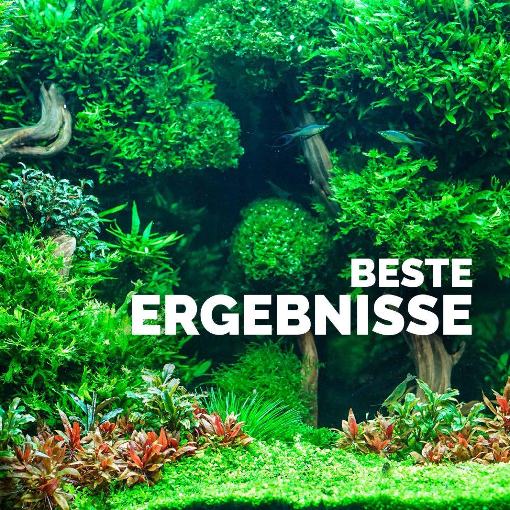 Be-Smart Aquarium Dünger